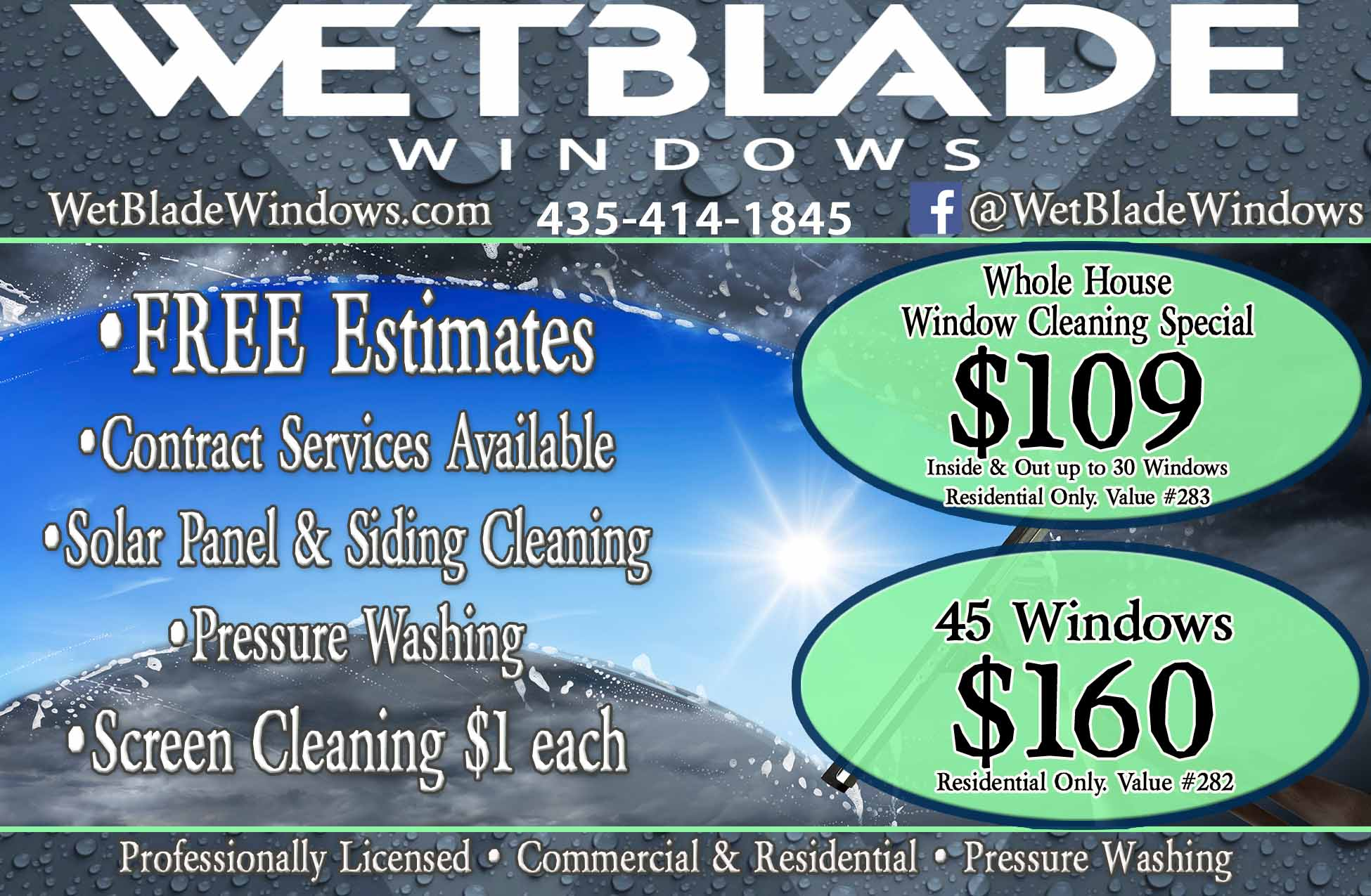 WetBlade Window Cleaning