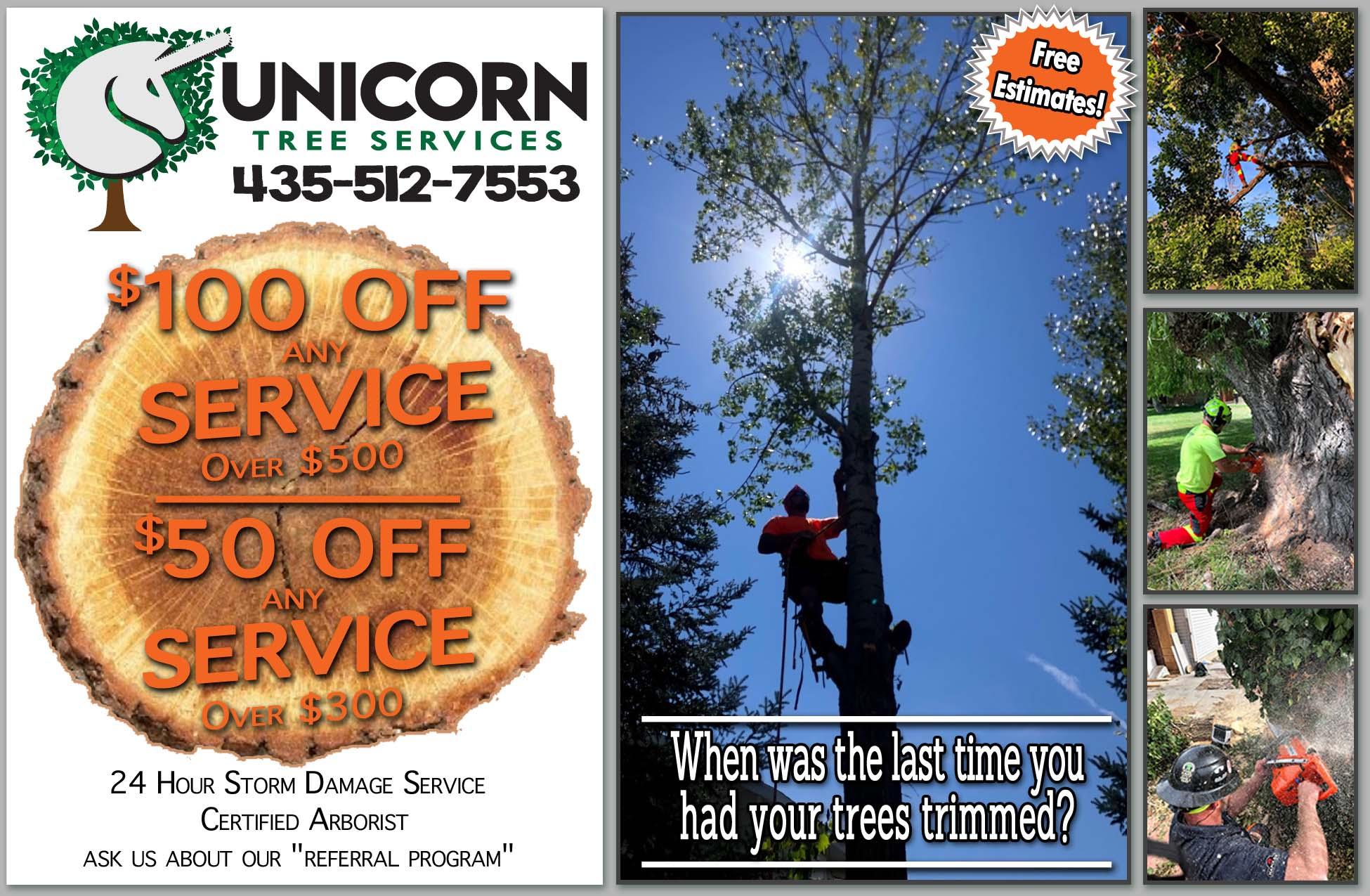 Unicorn Tree Service Tree Removal